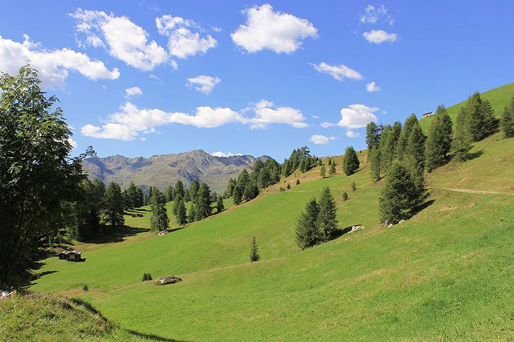 Excursions and leisure facilities in Val Casies